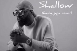 Praiz - Shallow